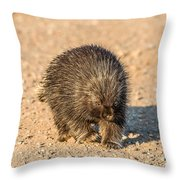 Porcupine Walking Throw Pillow