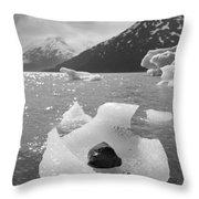 Portage Glacier, Ice Basket Throw Pillow