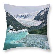 Porter Glacier Alaska  Throw Pillow