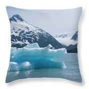 Porter Glacier Alaska II Throw Pillow