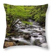 Porters Creek Throw Pillow