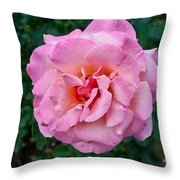 Portland Roses #2 Throw Pillow