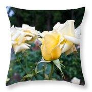 Portland Roses #3 Throw Pillow