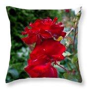 Portland Roses #6 Throw Pillow