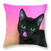 Portrait Hungry Black Kitten Throw Pillow