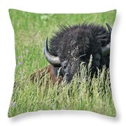 Portrait Of A Bison Throw Pillow