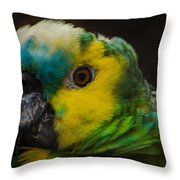 Portrait Of A Blue-fronted Parrot Throw Pillow