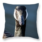 Portrait Of A Canada Goose Throw Pillow