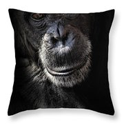 Portrait Of A Chimpanzee Throw Pillow
