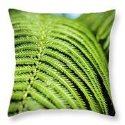 Portrait Of A Fern Throw Pillow