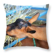 Portrait Of A Goat 2 Throw Pillow
