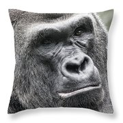 Portrait Of A Gorilla Throw Pillow by Jeff Swanson