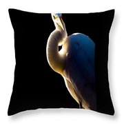 Portrait Of A Great Egret  Throw Pillow