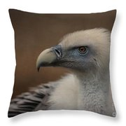 Portrait Of A Griffon Vulture Throw Pillow