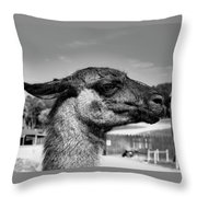 Portrait Of A Llama Mafia Leader Throw Pillow
