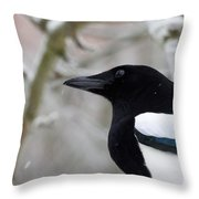 Portrait Of A Magpie Throw Pillow
