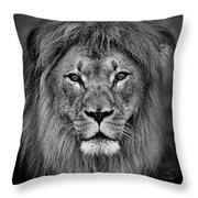 Portrait Of A Male Lion Black And White Version Throw Pillow