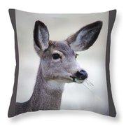 Portrait Of A Mule Deer Throw Pillow