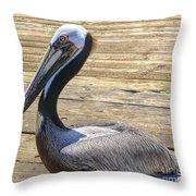 Portrait Of A Pelican Throw Pillow