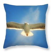 Portrait Of A Seagull Throw Pillow