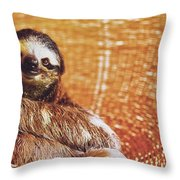 Portrait Of A Sloth Pet Looking In The Camera Throw Pillow