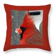 Portrait Of A Snowy Cardinal Throw Pillow