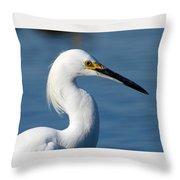 Portrait Of A Snowy Egret Throw Pillow
