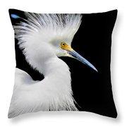 Portrait Of A Snowy White Egret Throw Pillow