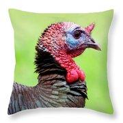 Portrait Of A Tom Turkey Throw Pillow