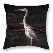 Portrait Of A Tri-colored Heron Throw Pillow