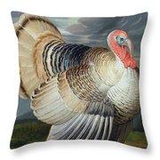 Portrait Of A Turkey  Throw Pillow