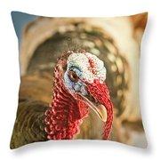 Portrait Of A Wild Turkey Throw Pillow