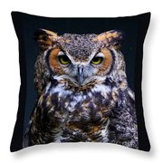 Portrait Of A Wise Man Throw Pillow