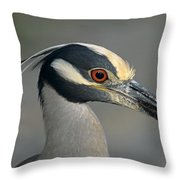 Portrait Of A Yellow Crowned Heron Throw Pillow