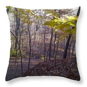 Portrait Of America - Hidden Love Throw Pillow