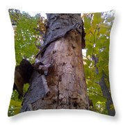 Portrait Of America - Look Up Throw Pillow