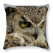 Portrait Of An Owl.  Throw Pillow