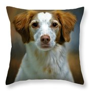 Portrait Of Gracie Throw Pillow by Stephanie Calhoun