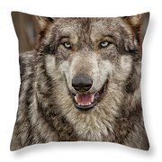 Portrait Of Gray Wolf Throw Pillow