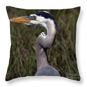 Portrait Of Great Blue Heron Throw Pillow