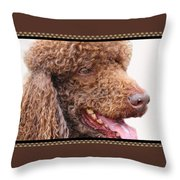 Portrait Of Guinness Throw Pillow