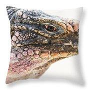 Portrait Of Iguana Throw Pillow