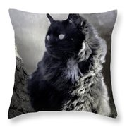 Portrait Of Smoky  Throw Pillow