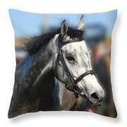 Portrait Of The Grey Race Horse Throw Pillow