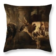 Portrait Of Two Oxen - The Property Of The Earl Of Powis Throw Pillow