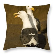 Portrait Of Two Seagulls On A Beach Throw Pillow