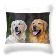 Portrait Of Two Young Beauty Dogs Throw Pillow