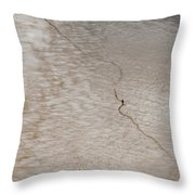 Portugal 12 Throw Pillow