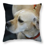 Portuguese Pointer Dog On A Leash Throw Pillow