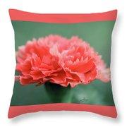 Posh Carnation Throw Pillow